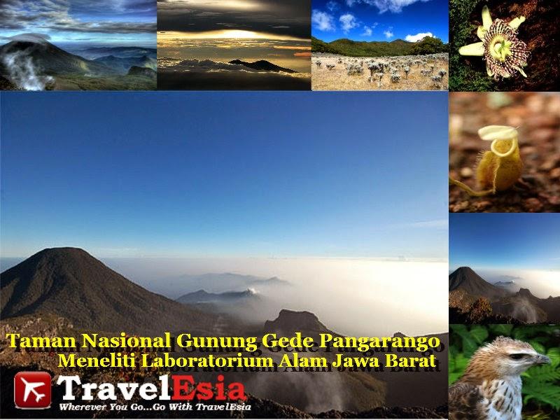 Taman Nasional Gede Pangrango