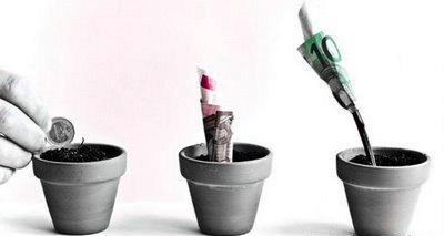 Planta del dinero simbolo tradicional de buena suerte y for Planta del dinero feng shui