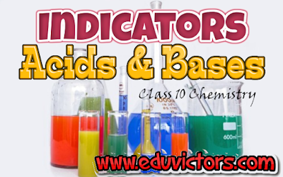 CBSE Class 10 - Chemistry - Acids and Bases - Indicators (#class10ChemistryNotes)(#eduvictors)(#cbsenotes)