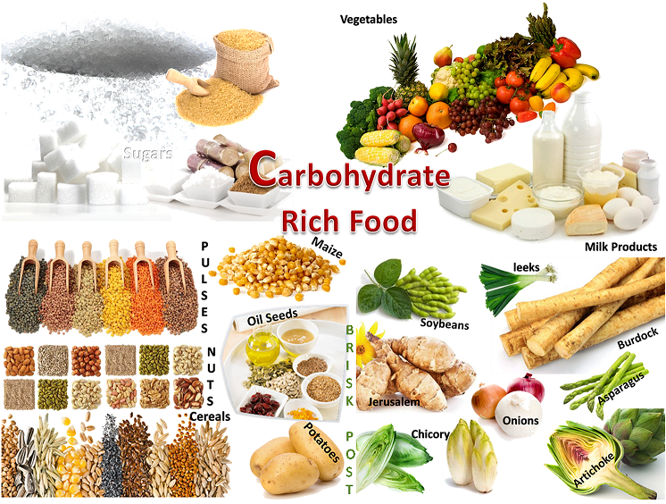 Food Items High In Carbohydrates