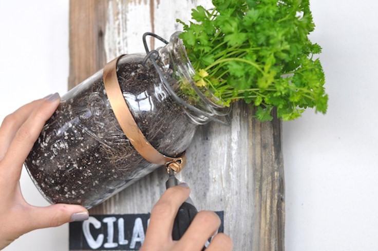 Rustic Mason jar wall sconce decor herb Garden