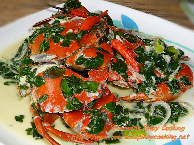 Mud Crabs in Coconut Milk