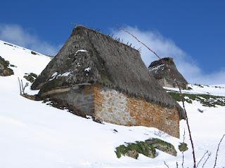 Saliencia (Asturias, España)