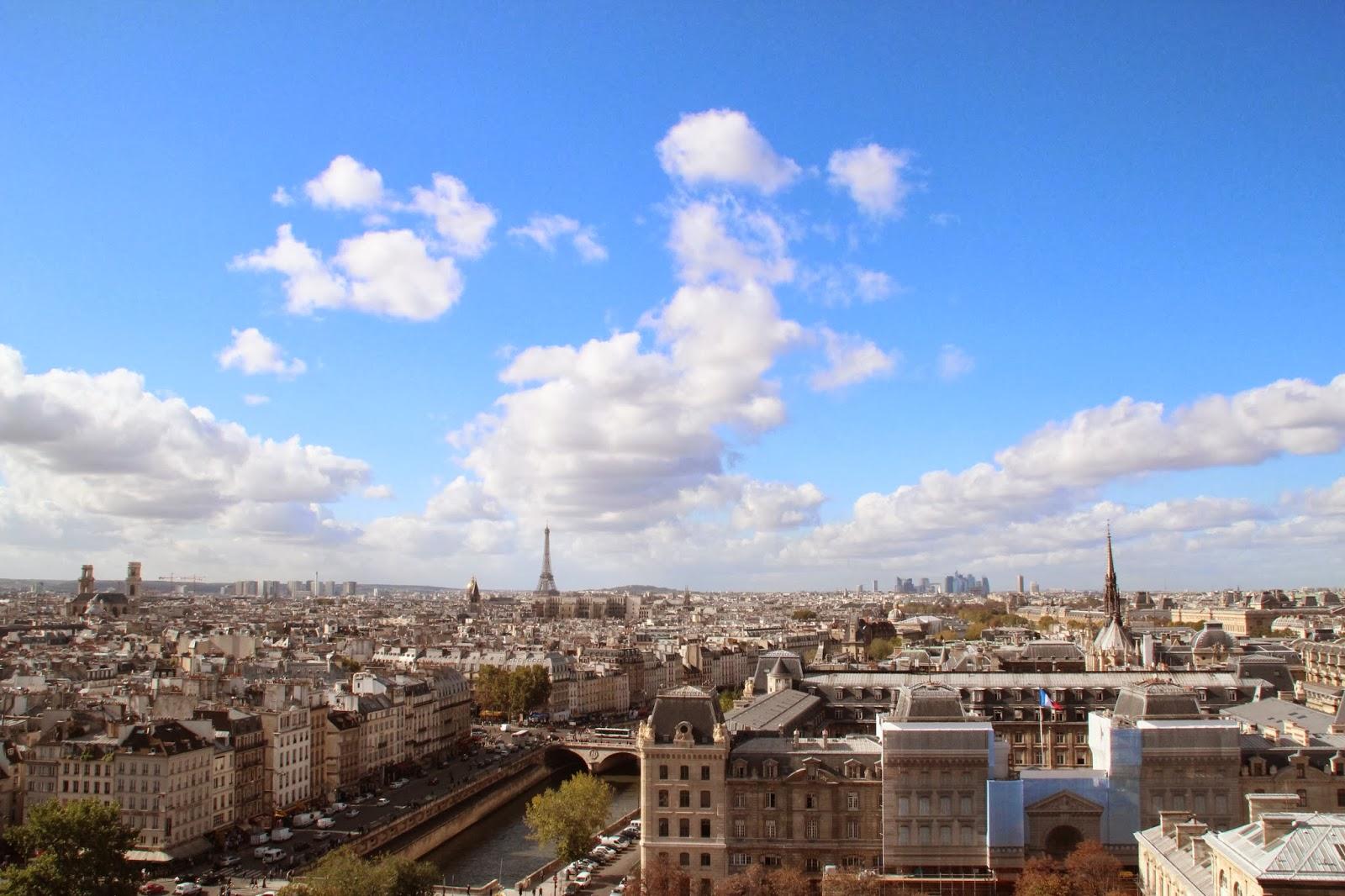 Las Vistas desde Notre Dame con Torre Eiffel al fondo
