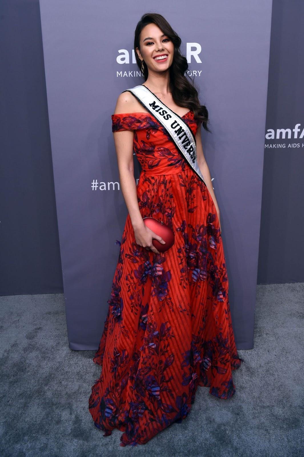 Catriona Gray - amfAR New York Gala in NYC - 02/06/2019