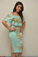 Nikki Galrani in Cute Dress Dress At Marakathamani Success Meet ~  Exclusive 012.JPG