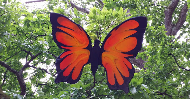 perhonen, perhoskoriste