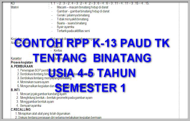 CONTOH RPP K-13 TENTANG  BINATANG USIA 4-5 TAHUN SEMESTER 1