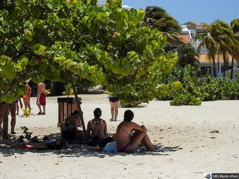Descansando debaixo da árvore na Eagle Beach: Praias de Aruba, Caribe
