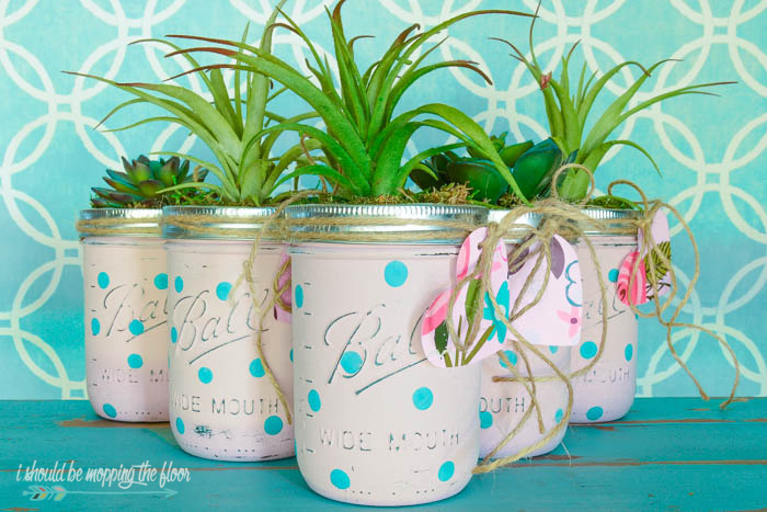 DIY Mason Jar Succulents | Make these sweet, budget friendly mason jar succulents for a simple and lovely gift!