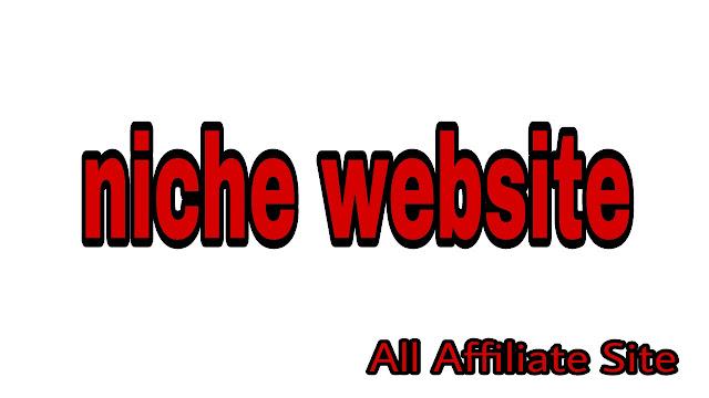Niche website/blog and its advantages