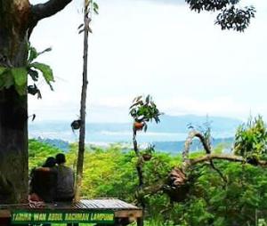 Keindahan pegunungan & teluk lampung berdasarkan atas rumah pohon tahura war lampung