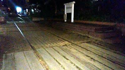 府中市 夜の下河原公園