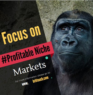 How to Find Profitable Niche For Blogging