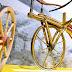 Em 2017, bicicleta comemora 200 anos da sua criação