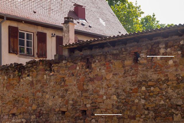 Enceinte médiévale, secteur du couvent des Catherinettes (2018)