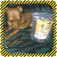 Bully Sticks Review dog