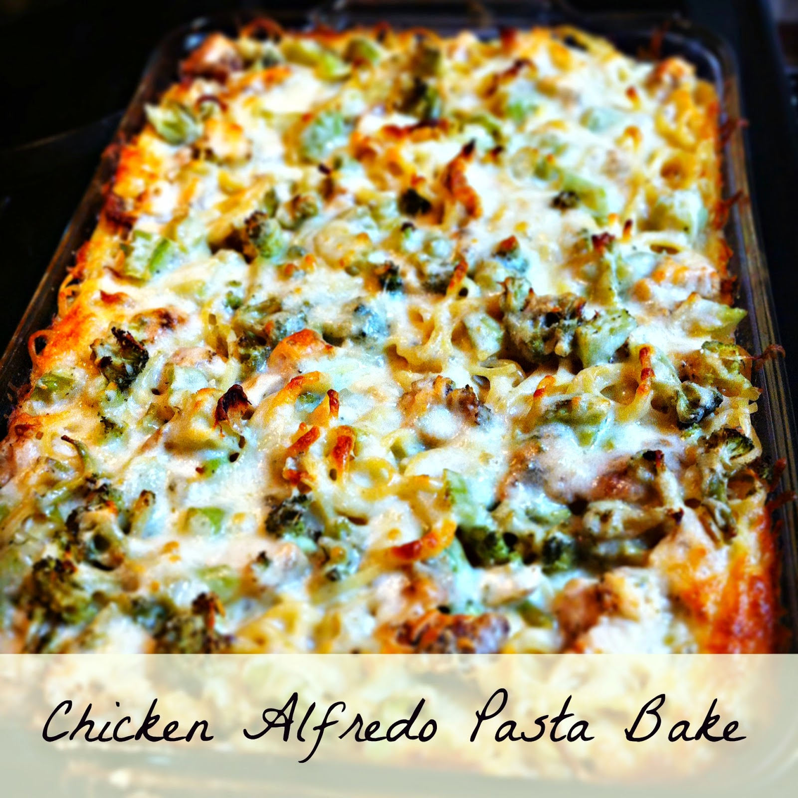 chicken Alfredo pasta bake hickory ridge studio