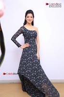 Telugu Actress Richa Panai Stills in One Shoulder Floral Long Dress at Rakshaka Bhatudu Movie Interview  0022.JPG