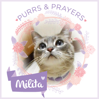 Purrs and prayers badge for Lita.