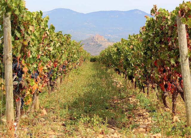 Vides, paisajes de La Rioja Alta