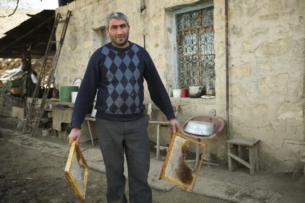 Armenia y Karabaj producen 2.400 toneladas anuales de miel