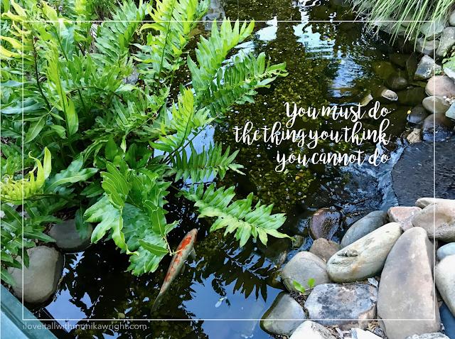 #eleanor roosevelt #quote #choose joy #sunday photos #iloveitall #koi #encouragement #do #hope #motivation