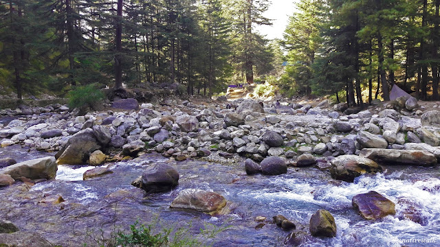 Parvati river flowing in kasol