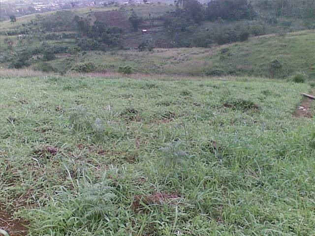 Foto(5196) Jual Tanah Milik | Kebun 23 Ha, Lokasi Puncak jual tanah di puncak