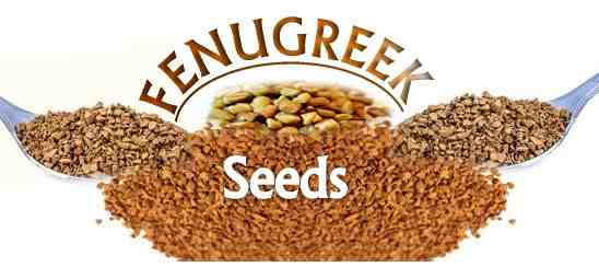 "Fenugreek seeds for ""Diabetes"""