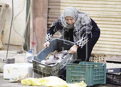 «خليها تعفن» حملة لمقاطعة الأسماك بالدقهلية: «كيلو البلطي بـ60 جنيهًا»