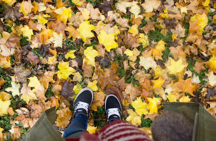 Colores otoño fotografia Belfast