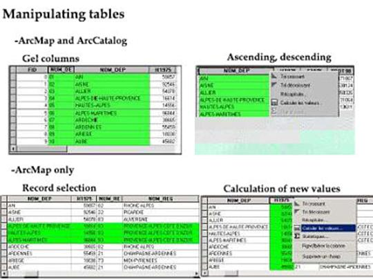 Tutorial ArcGis: Working with Tables Part1