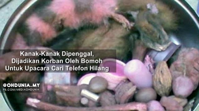 Kanak-Kanak Dipenggal, Dijadikan Korban Untuk Upacara Cari Telefon Hilang