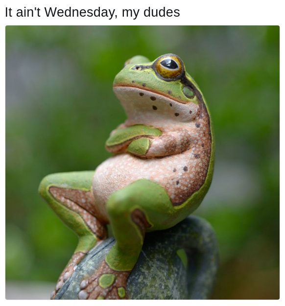 not Wednesday frog