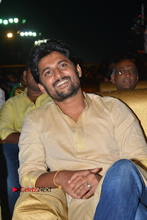 Nenu Local Audio Launch Stills  0091.JPG