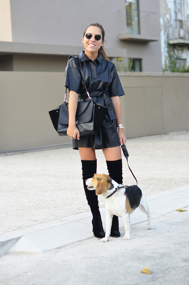 Streetstyle , beagle - Zara leather dress, céline trapeze black bag, over the knee velvet boots, ray ban round sunglasses