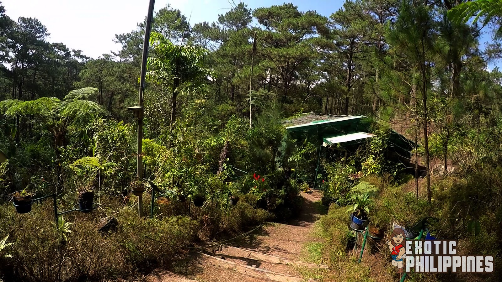 Butterfly Sanctuary of the Camp John Hay Baguio