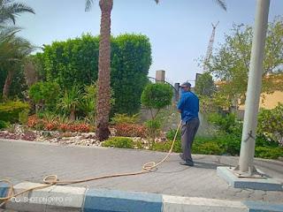 تامر مرعى وكيل وزارة الصحة بالبحر الأحمر يتابع أعمال المكافحة بالميناء البحرىبسفاجا