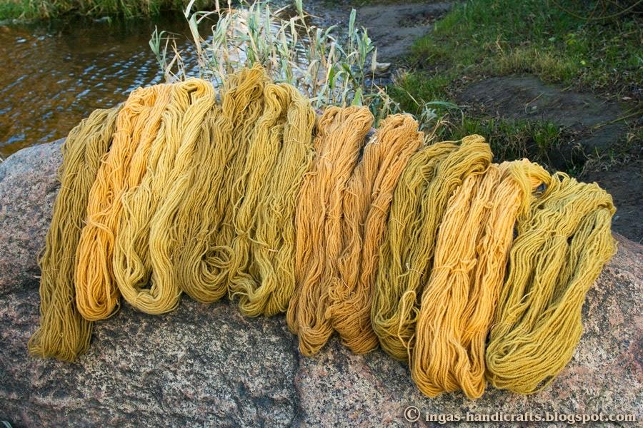 taimedega värvitud Natural Dyes, kermesmari American pokeweed