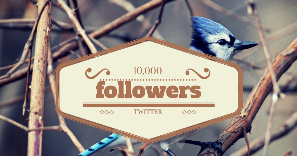 Buy 10,000 Twitter Followers - Just $34 99 - Billion Followers