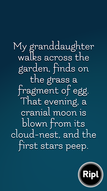 Flash fiction comparing moon, skull and egg
