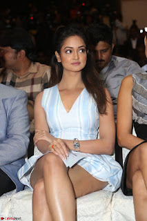 Shanvi Looks super cute in Small Mini Dress at IIFA Utsavam Awards press meet 27th March 2017 89.JPG