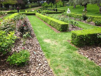 Cervantes Rose Garden