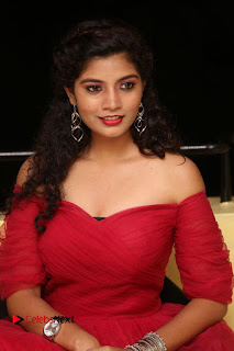 Actress Bindu Pictures in Red Dress at Attarillu Movie Press Meet  0223.JPG