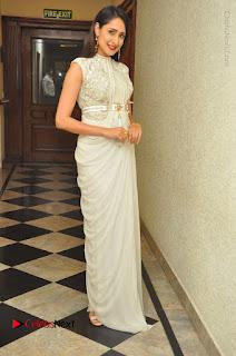 Actress Pragya Jaiswal Stills in Beautiful White Dress at turodu Audio Launch  0071.JPG