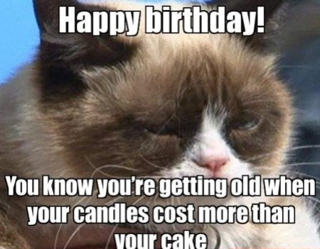 Funny Happy Birthday Cat Meme : Funny happy birthday images free download