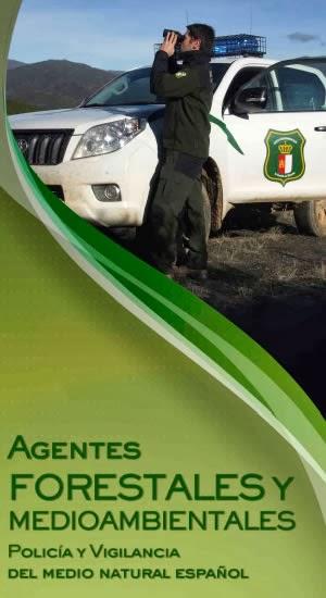 http://www.aeafma.es/images/stories/documents/aeafma/triptico_aaffmm.pdf