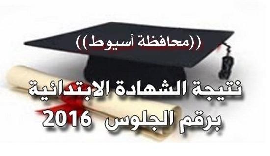 ظهرت الان نتيجة الشهاده الابتدائيه محافظة اسيوط اخر العام 2016 بالاسم ورقم الجلوس