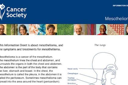 Mesothelioma, Symptoms and Treatments for Mesothelioma PDF #3